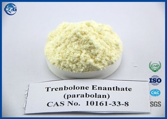 China Injectable Tren Anabolic Steroid For Cutting Cycle Trenbolone Enanthate supplier